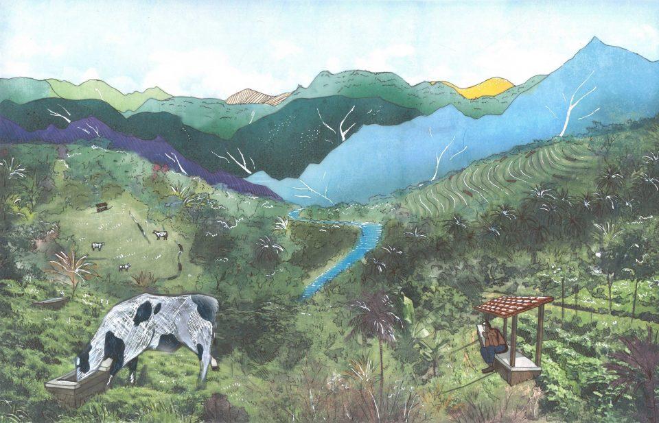 The Honduran Production Valleys