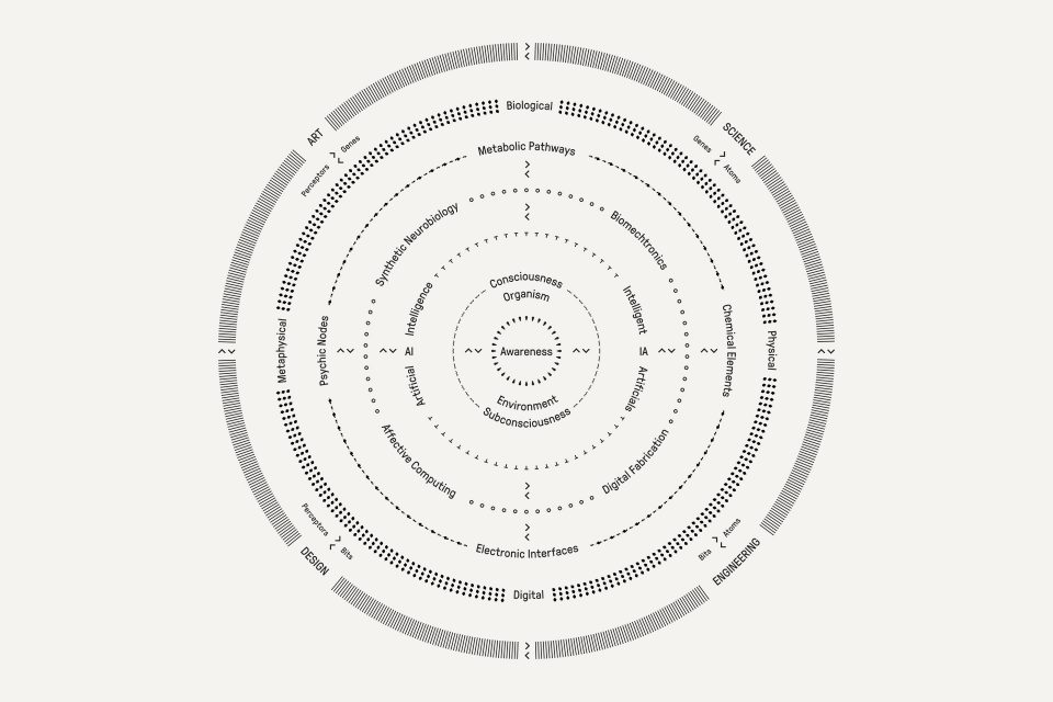 Wallpaper editorial, typography & infographics